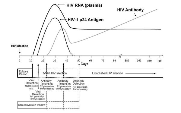 Bioplex 2200 hiv ag ab diagn stico cl nico bio rad - Test hiv p24 periodo finestra ...