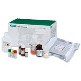 Platelia Toxo IgM