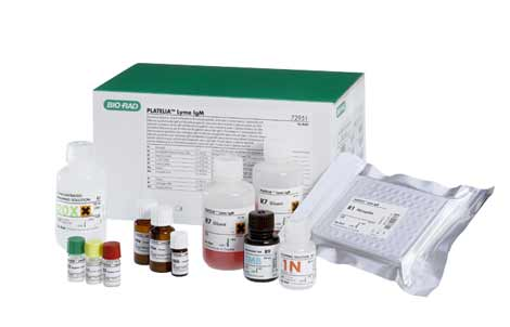 Borreliosis (Lyme Disease)
