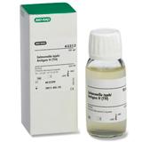 <em>Salmonella</em> Typhimurium &#8211; Suspension H (TMH)