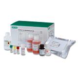 Platelia <em>M. pneumoniae</em> IgM (TMB)