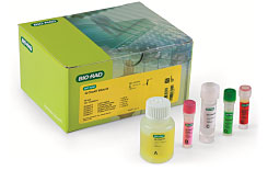 iQ-Check Vibrio Real-Time PCR Detection Kit