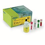 iQ-Check Enterobacteriaceae Kit
