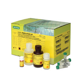 TeSeE Purification Kit #355-1144