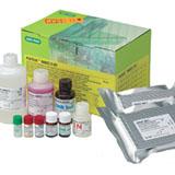 Platelia Rabies II Kit ad usum veterinarium #355-0180