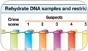 DNA Flowchart