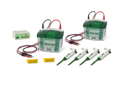 Protein Electrophoresis Instructional Lab Set 1 | Life Science ...