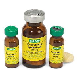 buy brand levitra no prescription