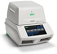CFX384 Touch Real-Time PCR Detection System