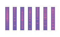 Nucleic Acid Rulers/Ladders