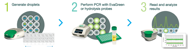 QX200 Droplet Digital PCR system workflow