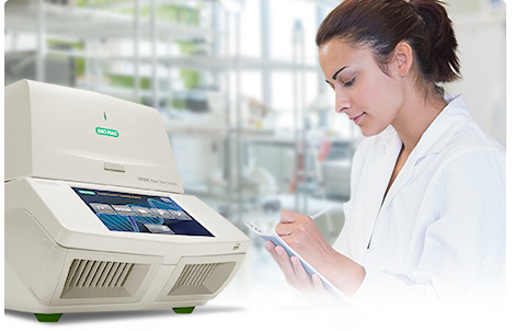 Thermal Validation Services for Thermal Cyclers and Real-Time PCR Detection Systems