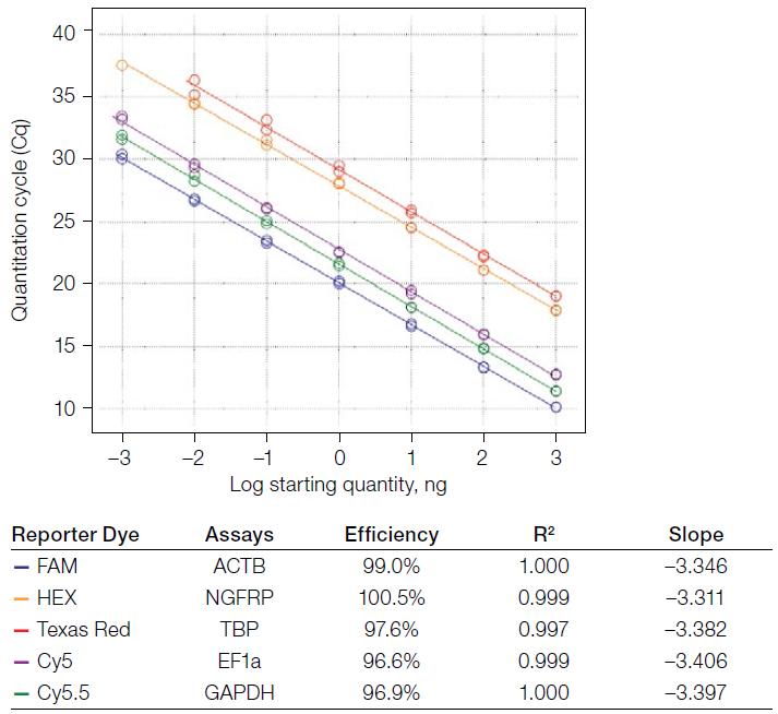 Чувствительность и воспроизводимость Reliance One-Step Multiplex Supermix