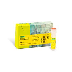 hFAB™ Rhodamine Anti-GAPDH 40 µl