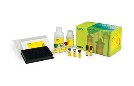 Bio-Plex Pro RBM Canine Kidney Toxicity Assays - Bio-Plex Pro RBM Kidney Toxicity Assays