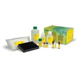 Bio-Plex Pro Human Isotyping Panel, 6-plex