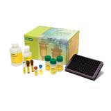Bio-Plex Pro Human Chemokine Panel 40-Plex