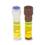 Bio-Plex Pro™ Non-Human Primate Diabetes Visfatin Set