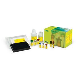 Bio-Plex Pro RBM  Canine Kidney Toxicity Albumin Kit