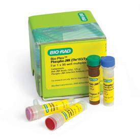 Bio-Plex Phospho-ERK1/2 (Thr202/Tyr204, Thr185/Tyr187) Assay #171-V22238