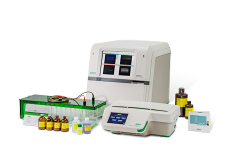 2-D Electrophoresis Workflow