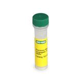 Precision Protein™ StrepTactin-AP Conjugate