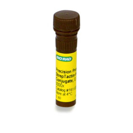 Precision Protein™ StrepTactin-HRP Conjugate