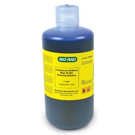 BIO-RADのクマシーブリリアントブルー R-250 染色液