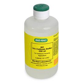 10x IEF Cathode Buffer, 250 ml