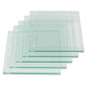 Biorad Glass Plates