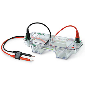 Mini-Sub<sup>&reg;</sup> Cell GT Horizontal Electrophoresis System