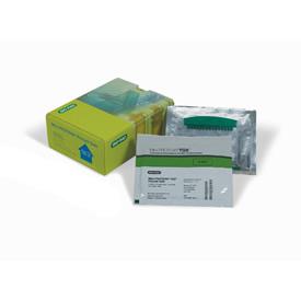 4–20% Mini-PROTEAN® TGX™ Precast Gel