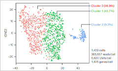T-SNE dot plot graph depicting three separated collection of data points representing different populations