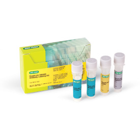 ReadiLink 405/508 Antibody Labeling Kit