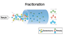 Protein Fractionation