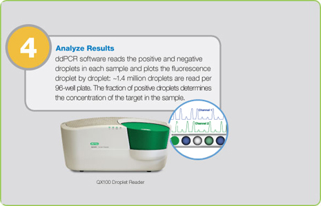 Step 4: Analyze Results
