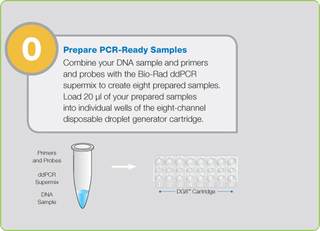 Step 0: Prepare PCR-Ready Samples prior to Starting ddPCR