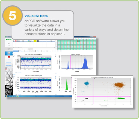 digital-pcr-visualize-data-step5