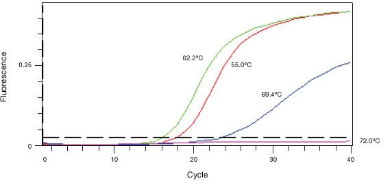Qpcr Assay Design And Optimization Lsr Bio Rad