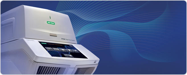 What Is Real Time Pcr Qpcr Lsr Bio Rad