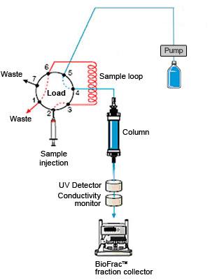 Low Pressure Chromatography Lsr Bio Rad