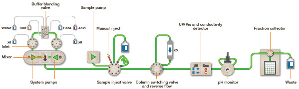 Fast Protein Liquid Chromatography   LSR   Bio-Rad
